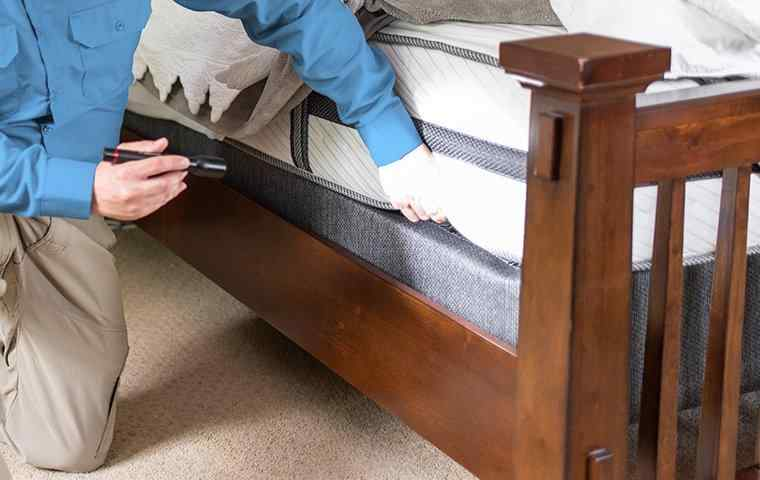 a tech inspecting a mattress in home