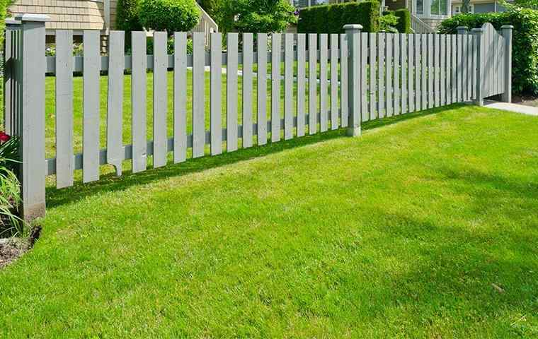 beautiful lawn and fence