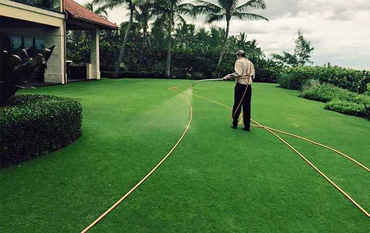 tech treating a nice lawn