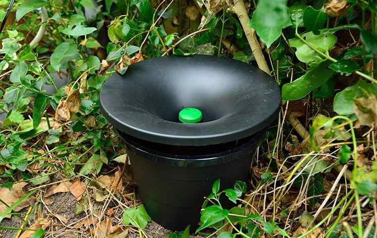 an in2care mosquito trap