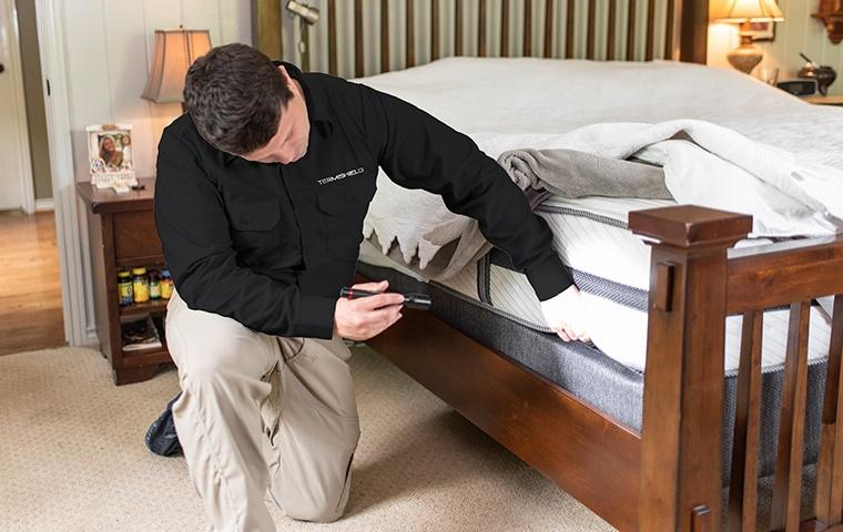 a pest control service technician inspecting a bedroom for bed bugs inside of a home in mishawaka indiana