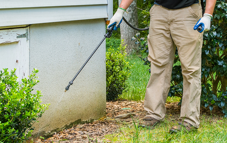 a technician performing a spray treatment on the exterior of a california home