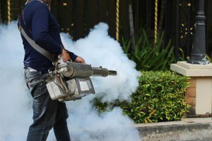 Fogging for mosquitoes