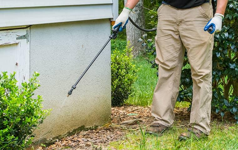 a technician performing an exterior spray treatment in plano texas
