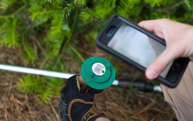 a technician checking a termite bait station in dallas