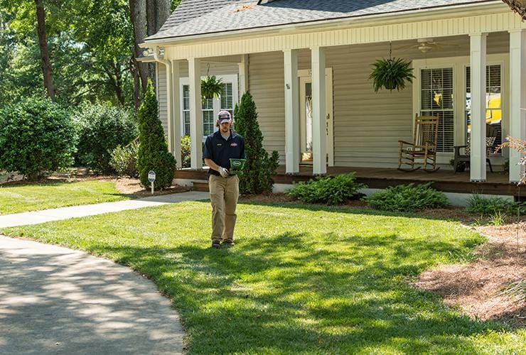 ant treatment in greenville south carolina