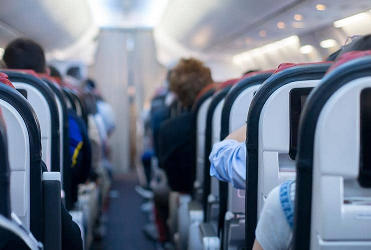 bed bugs hitch rides on airplanes