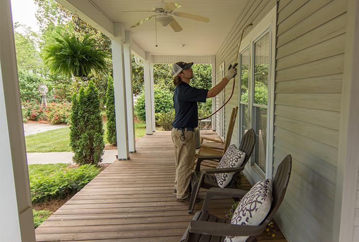 home pest control service in greenville sc