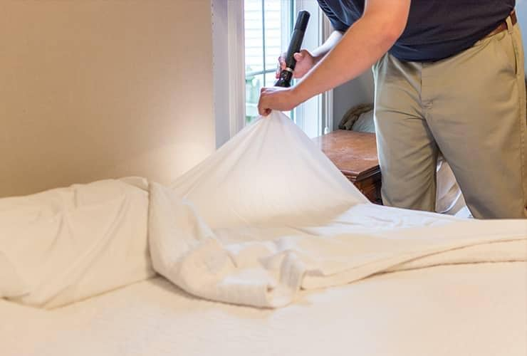 technician inspecting for signs of bed bugs