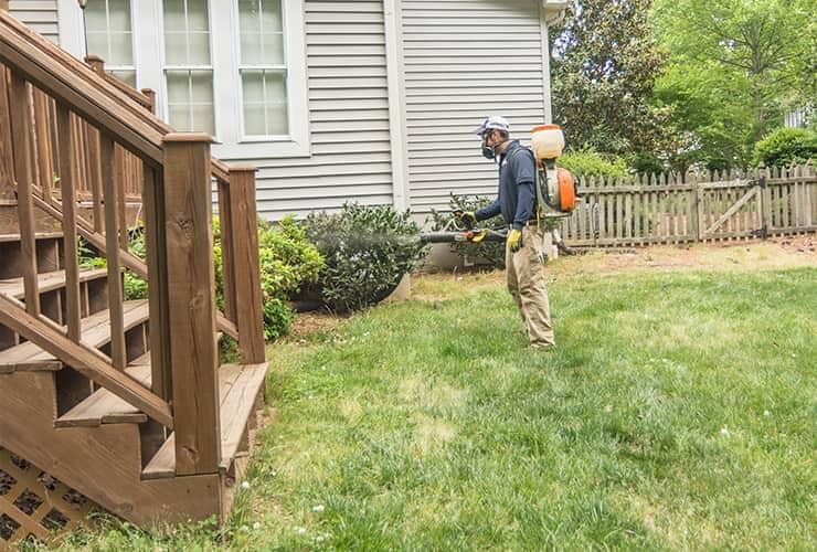 pest control technician treating yard for mosquitoes