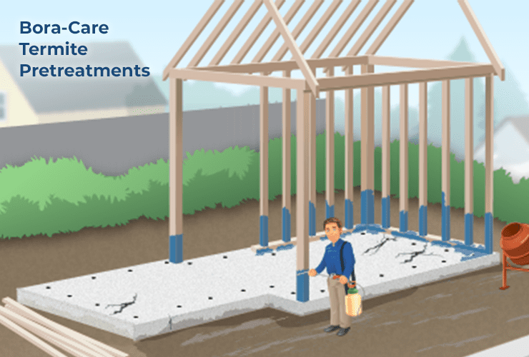illustration of bora-care termite pre-treatment