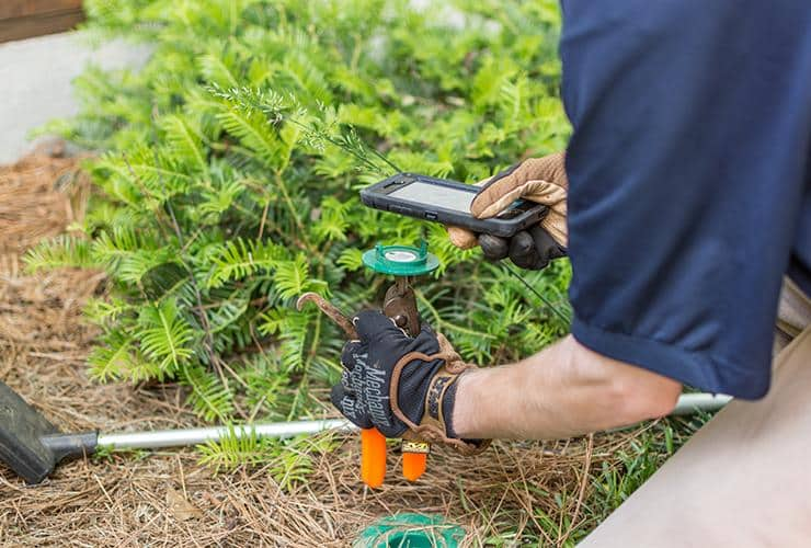 greenville termite control expert checking termite bait station