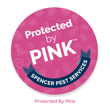 protected by pink