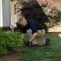service professional inspecting for termite activity