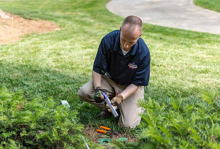 greenville pest control tech checking termite bait station