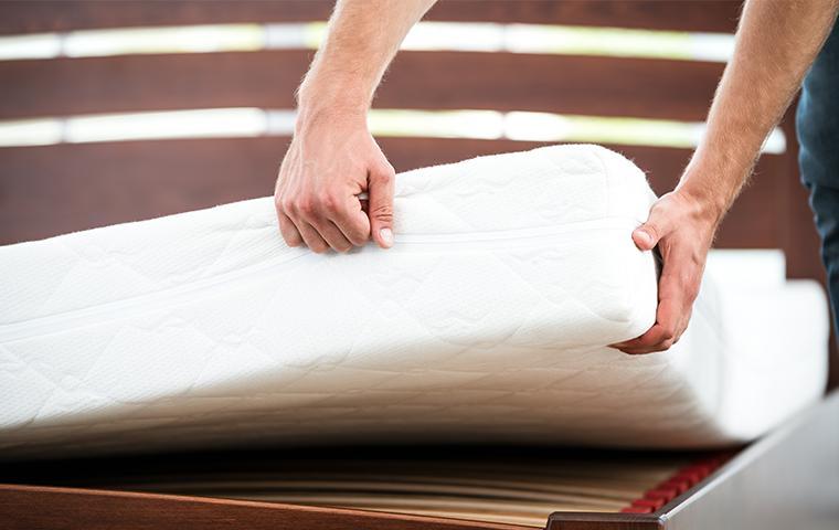 a technician performing a bed bug inspection in texarkana texas