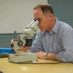 robert russell examining pest under microscope