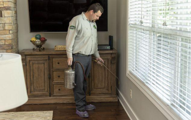 application of flea control product to the baseboards of a home
