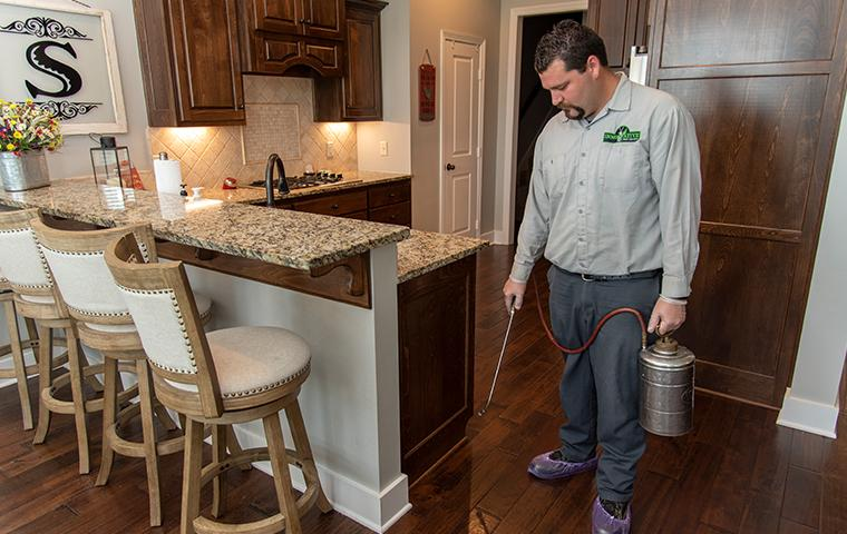 east texas pest control expert applying spider treatment in kitchen