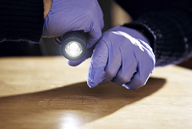 pest control specialist inspecting underneath bed for bed bugs with flashlight