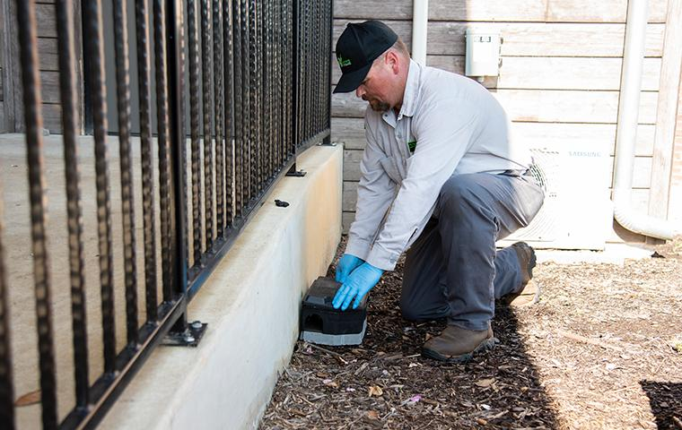 east texas rodent control specialist installing a rodent bait box