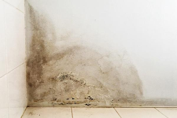 sign of moisture damage on a wall