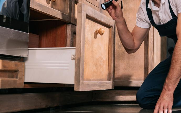 a service technician inspecting a drawer for termite activity