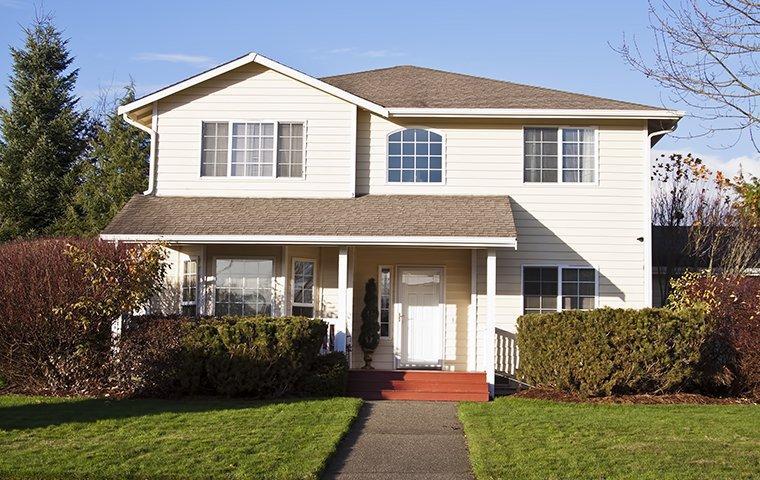 nice house in bellevue