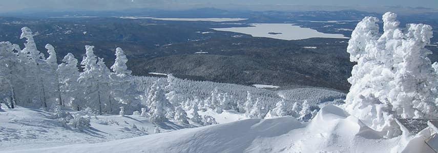Saddleback Near Summit