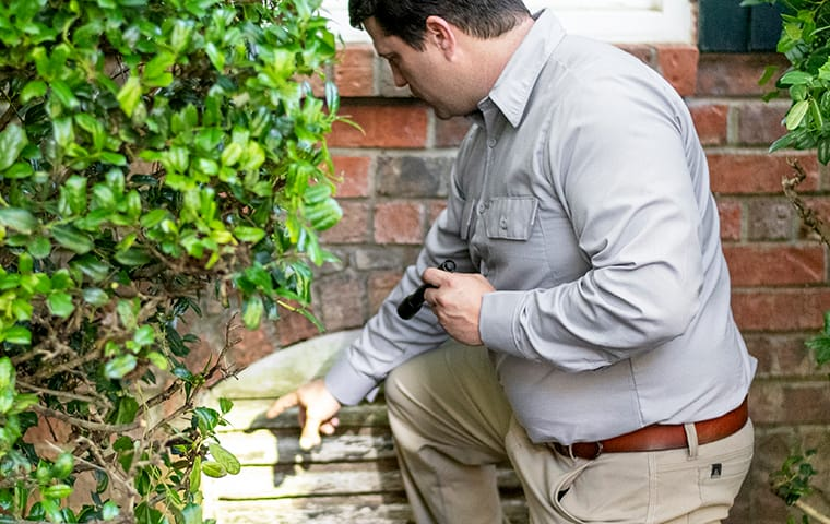a pest control technician inspecting for pests in baton rouge louisiana