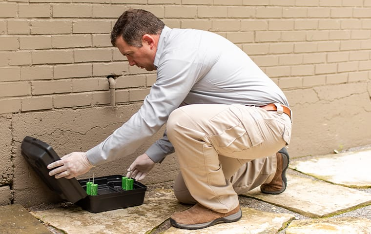 a pest control technician preparing a rodent station in baton rouge louisiana