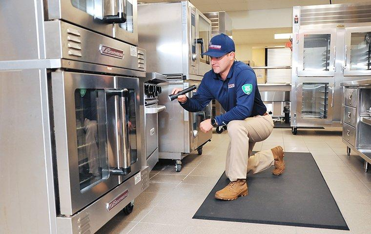 a pest technician inspecting a commercial kitchen