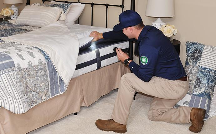 tech inspecting under a bed spread