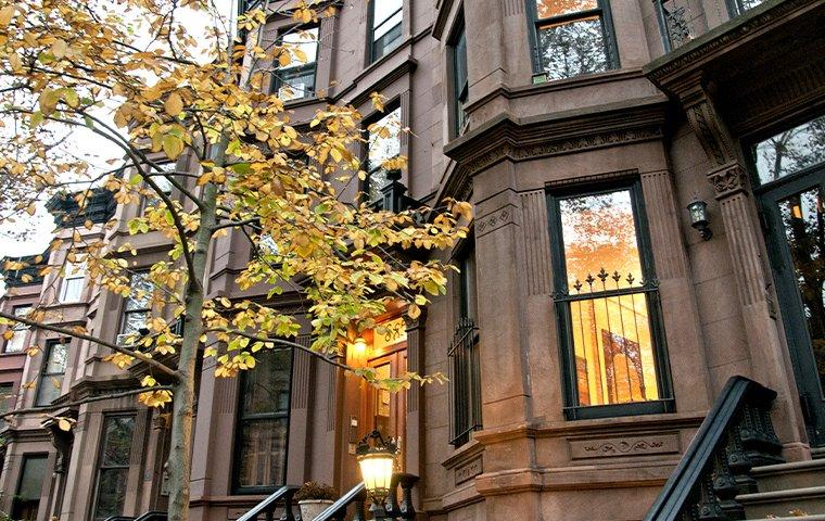 street view of homes in brooklyn new york