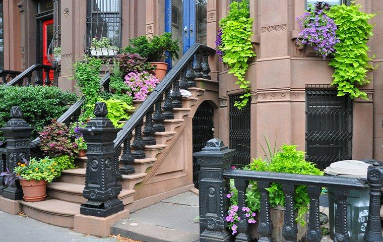 brownstones in queens new york