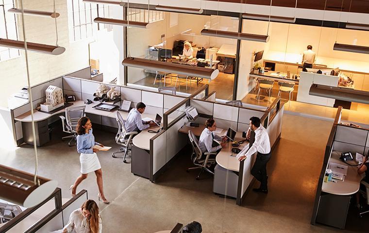 people inside of an office