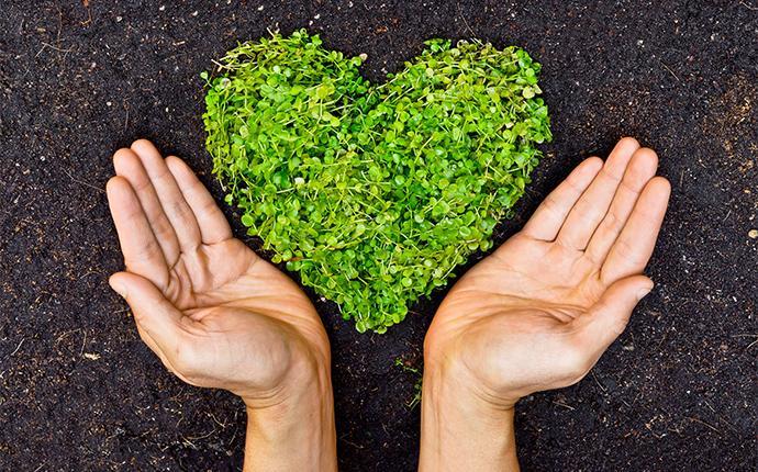 hands surrounding heart shaped grass
