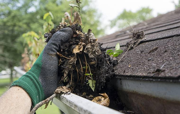 cleaning debris out of gutters