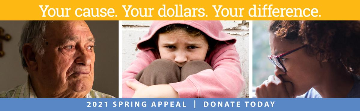 20201 Spring Appeal