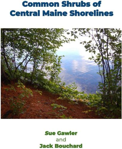 Common Shrubs of Central Maine