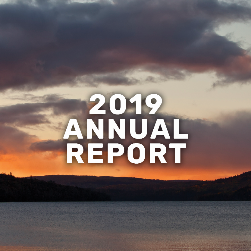 2019 annual report banner