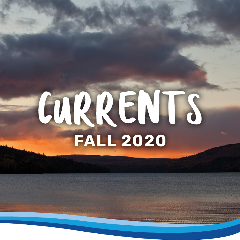 Currents fall 2020 banner