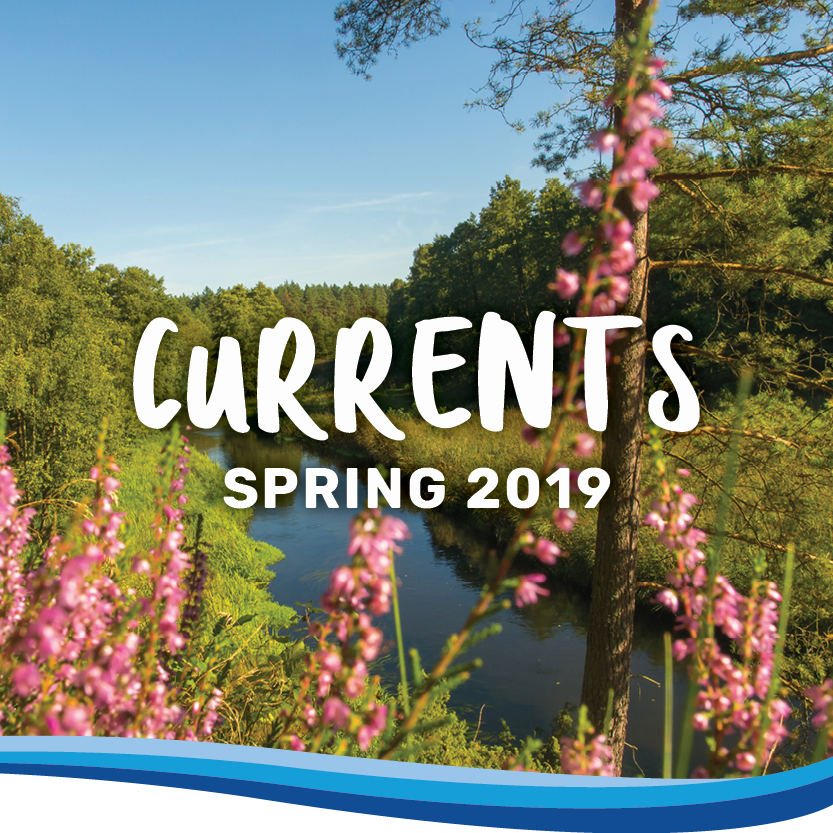 Currents spring 2019 banner