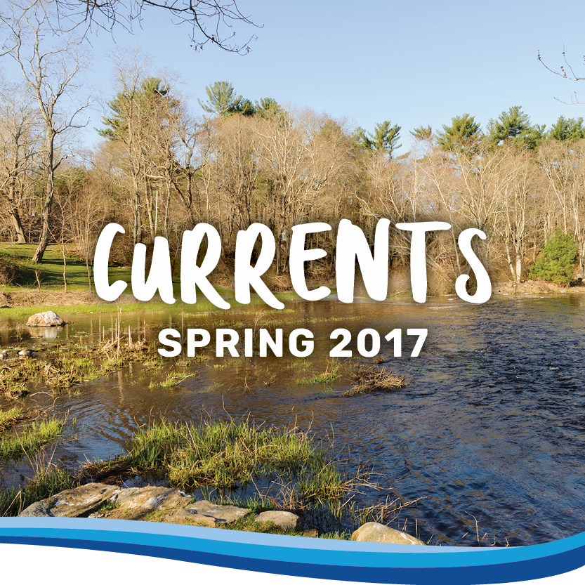 Currents spring 2017 banner