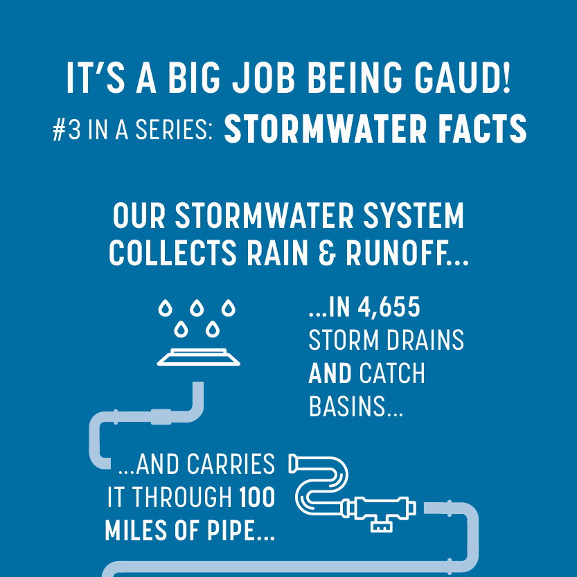 Stormwater facts banner