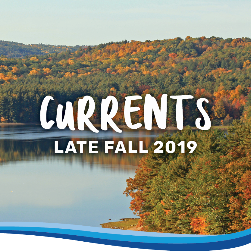 Currents late fall 2019 banner
