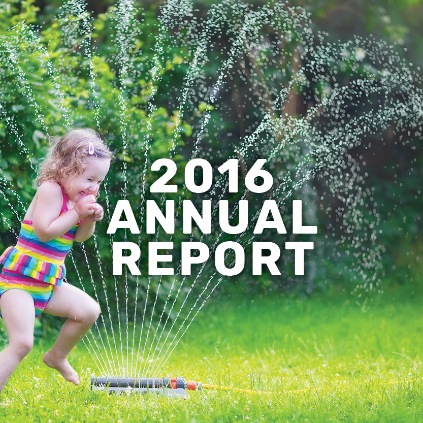 2016 annual report banner