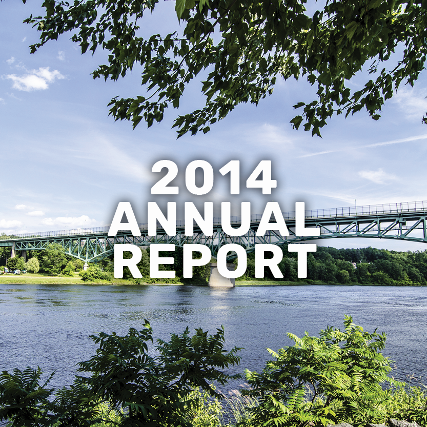2014 annual report banner