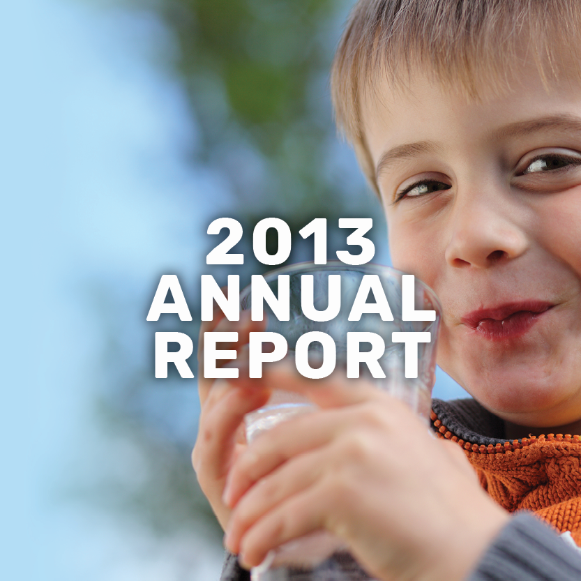 2013 annual report banner