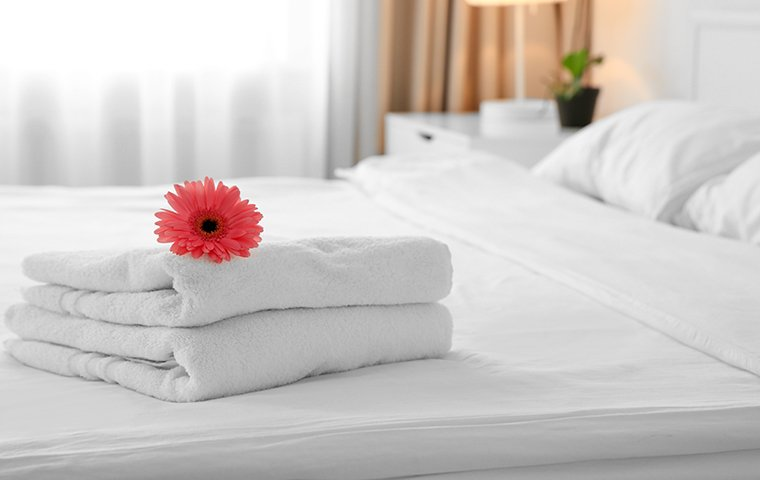 bed with towels on it